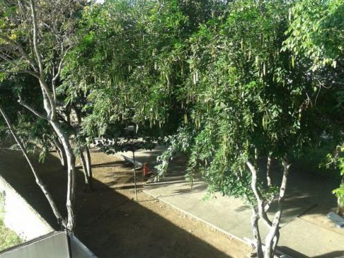 Quarto e sala na Área Verde de Arapiraca