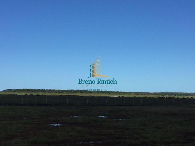 Fazenda à venda, 12100000 m² por r$ 37.000.000 - trancoso - porto seguro/bahia - Foto 9