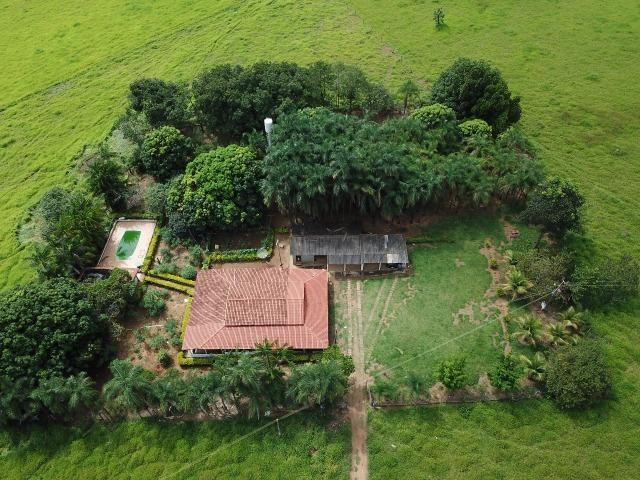 Fazenda em Bela Vista de Goiás de 15 Alqueires, à 45 km de Goiânia Dentro da Cidade