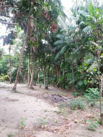 Vende-se Sítio no bairro Inhaúmas - Foto 5
