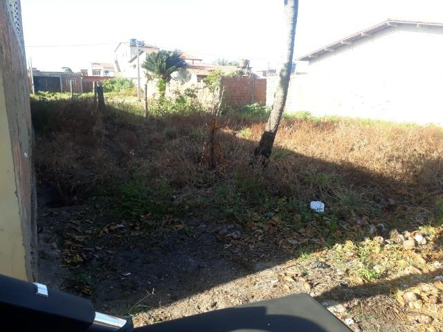 Terreno 8x20 em São José da Coroa Grande - Foto 2