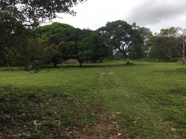 Chácara à venda em Zona rural, Cuiaba cod:21135 - Foto 13
