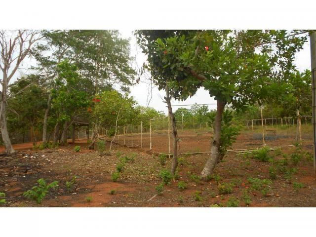 Chácara à venda em Zona rural, Chapada dos guimaraes cod:20937 - Foto 3