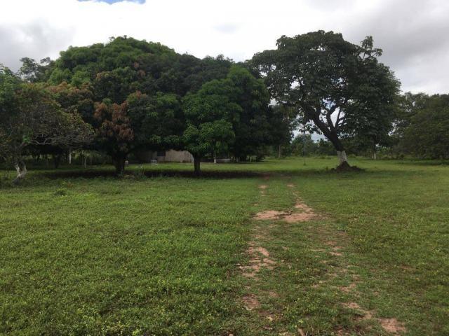 Chácara à venda em Zona rural, Cuiaba cod:21135 - Foto 10
