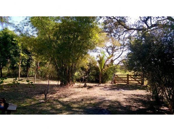Chácara à venda em Zona rural, Santo antonio do leverger cod:21685 - Foto 2