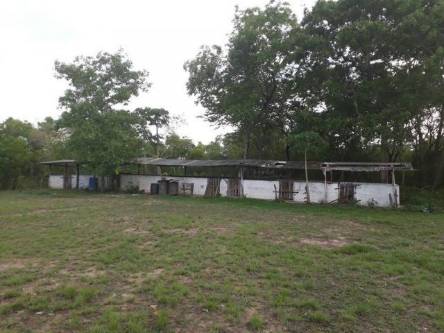 Chácara à venda em Zona rural, Varzea grande cod:20849 - Foto 12