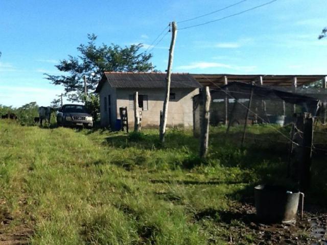 Chácara à venda em Zona rural, Nossa senhora do livramento cod:21342 - Foto 4