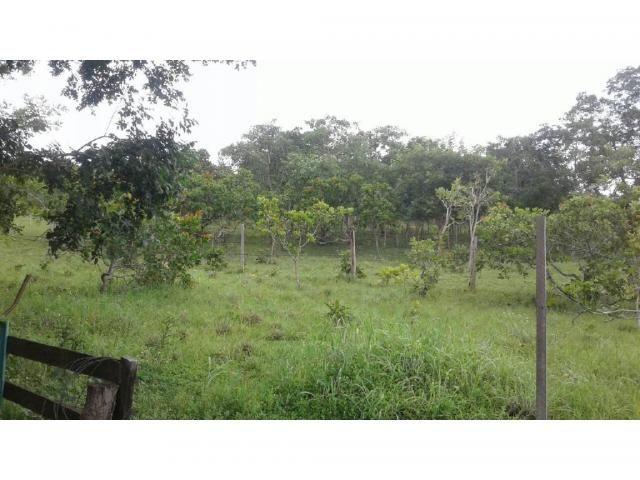 Chácara à venda em Zona rural, Cuiaba cod:21259 - Foto 8