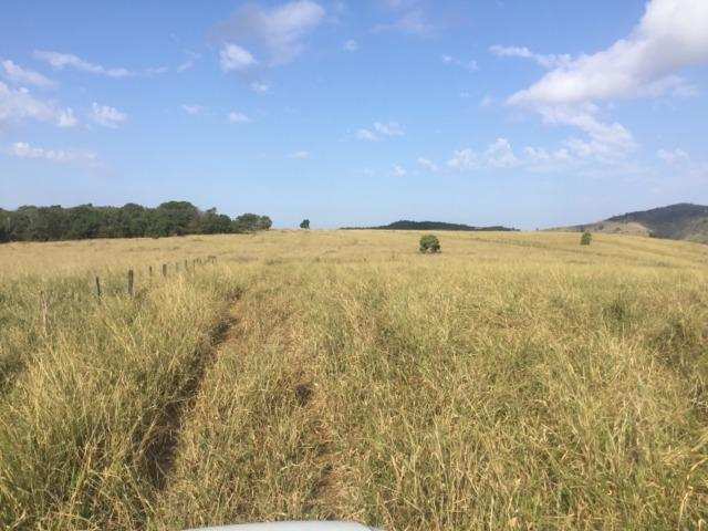 Fazenda 455.96 hectares - Governador Valadares/MG - Foto 6