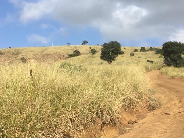 Fazenda 455.96 hectares - Governador Valadares/MG - Foto 4
