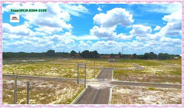 Lotes Terras Horizonte:::Ligue e invista:::: - Foto 7
