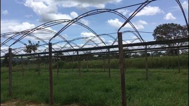 Estufa agrícola 2 por 6.300R$