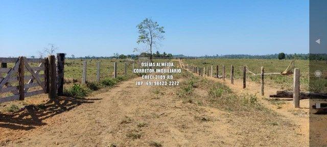 Fazenda em Machadinho - Foto 5