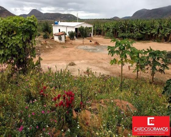 Sítio à venda em Ruy barbosa, Itaberaba cod:FA00004 - Foto 9