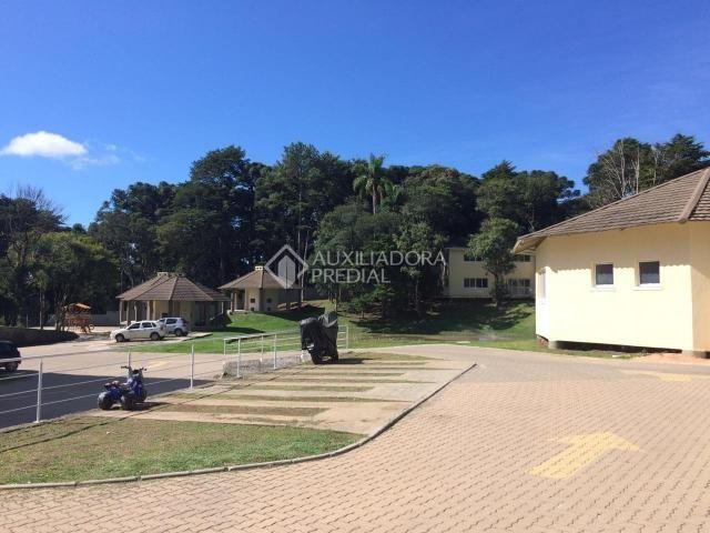 Apartamento para alugar com 2 dormitórios em São luiz, Canela cod:299218 - Foto 17
