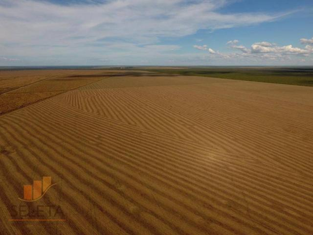 Fazenda à venda, 12650000 m² por r$ 16.000.000 - vila rica - barreiras/ba - Foto 9