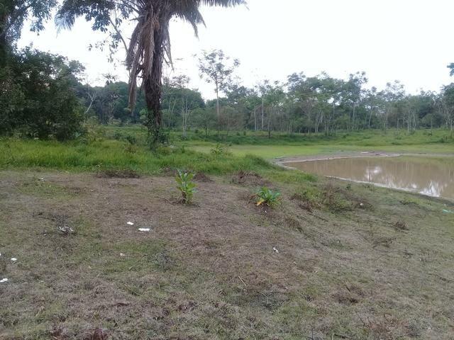 Alugo chácara 3 minutos do centro, 2 hectares - Foto 2