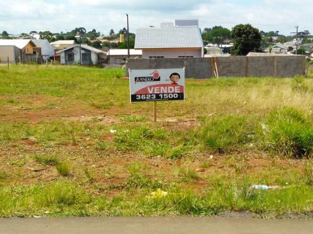 8287 | terreno à venda em vila bela, guarapuava