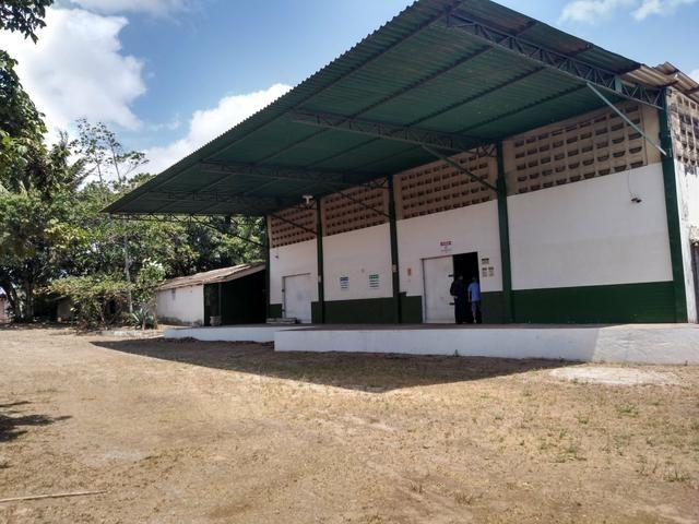 Galpão e áreas para empresas na BR 135