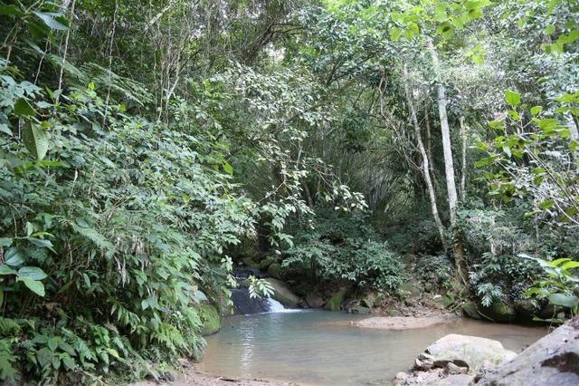Compre seu Lote Dentro de Condomínio Fechado em Cachoeiras de Macacu | Finan Direto - Foto 20