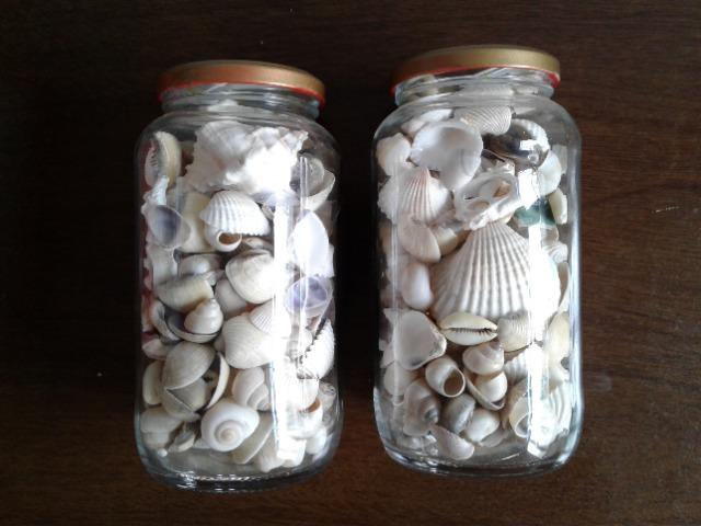 Conchas, búzios e estrelas do mar artesanato - Foto 2