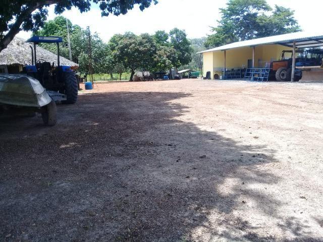 Fazenda Boa de Terra em Cocalinho - MT - Foto 16