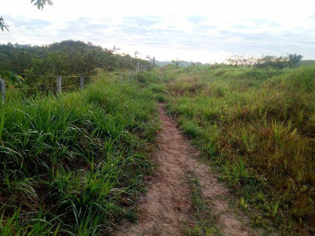 Fazenda  - Foto 7