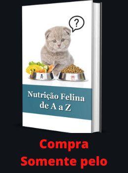 idioma felino pdf