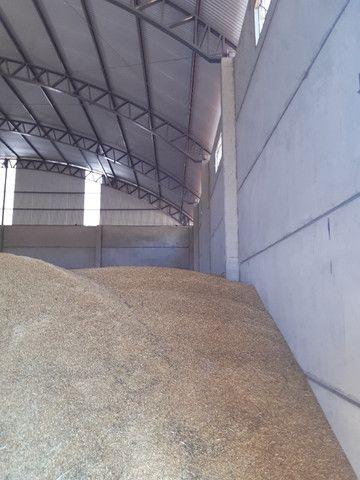 Pavilhão Armazém para Grãos 20 x 40m x 6,00m Pé Direito - Foto 20