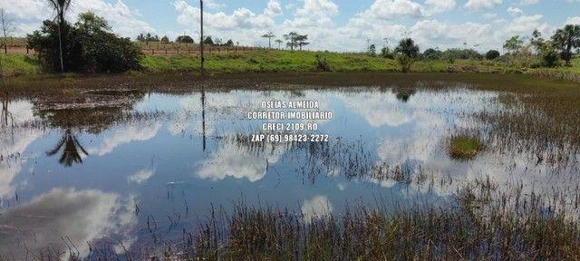 Fazenda em Machadinho - Foto 16