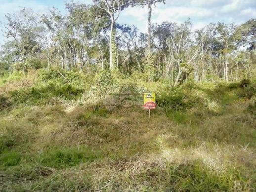 Terreno à venda em Cohapar, Guaratuba cod:125331 - Foto 8
