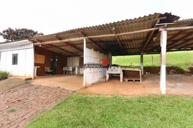 8287 | chácara à venda em guarapuava - Foto 3