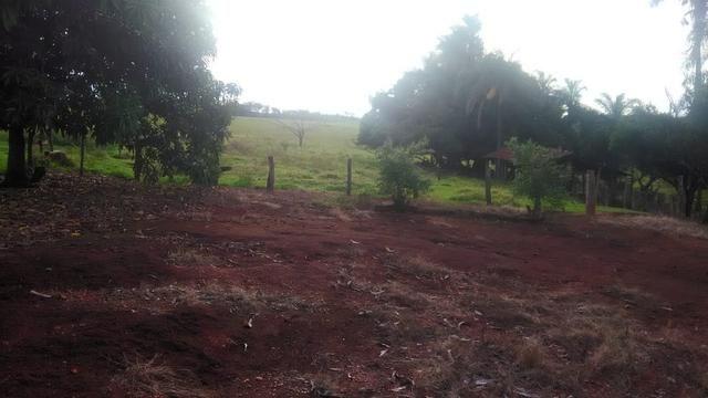 Fazenda terra de cultura município Tupaciguara - Foto 6