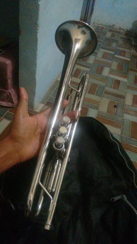 Trompete werill