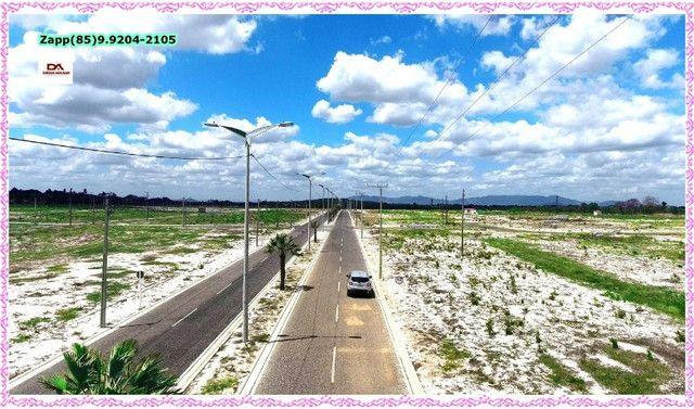 Lotes Terras Horizonte:::Ligue e invista:::: - Foto 11