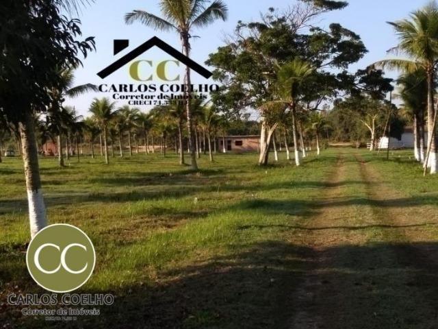 CMG Cód -138 Excelentes Terrenos Próximo ao Trevo de Búzios - Foto 7