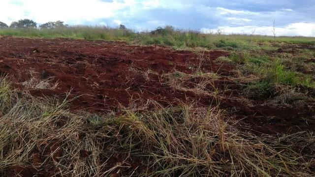 Fazenda terra de cultura município Tupaciguara - Foto 9