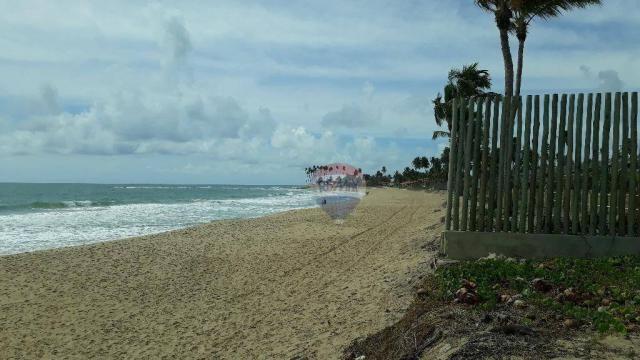 Terreno à venda em muro alto, no condomínio baía do cupe - Foto 14