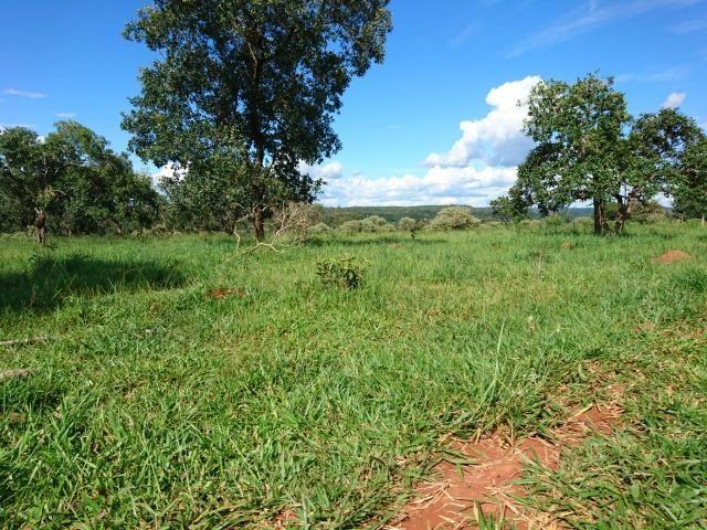 Fazenda 70 Alqueires em Cristianópolis-GO (Lavoura e Gado) - Foto 17