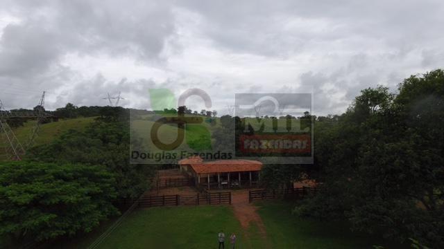220 Alq. (Plana + Asfalto + Rio). 70 km de Goiânia - Foto 4