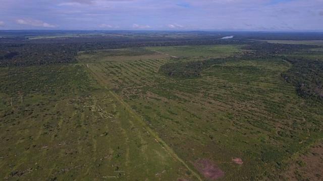 6.100 Há c/ Lavoura em Nova Canna do Norte-MT - Foto 4