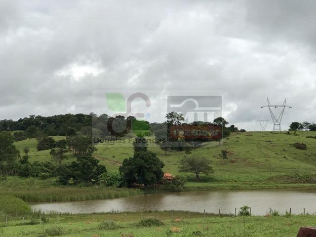 220 Alq. (Plana + Asfalto + Rio). 70 km de Goiânia - Foto 14