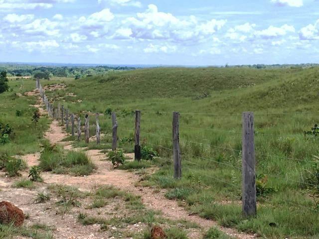 Fazenda de 137 alqueires em Abreulândia - To - Foto 3