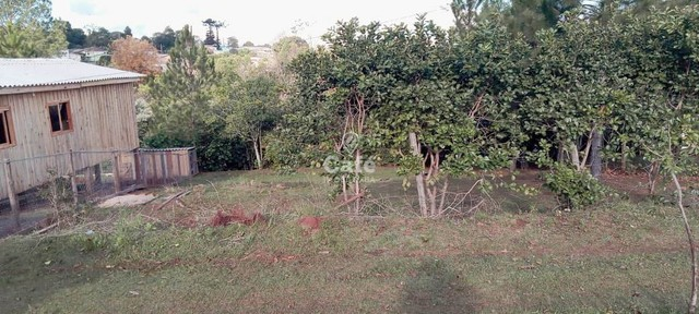 Terreno em Palmeira das Missões