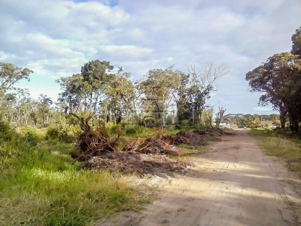 Terreno à venda em Cohapar, Guaratuba cod:125331 - Foto 11