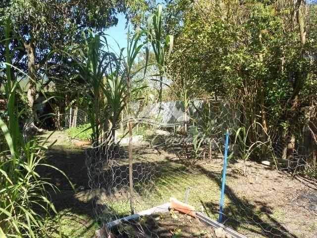 Jordão Corretores - Sítio 100% plano em agrobrasil - Foto 15