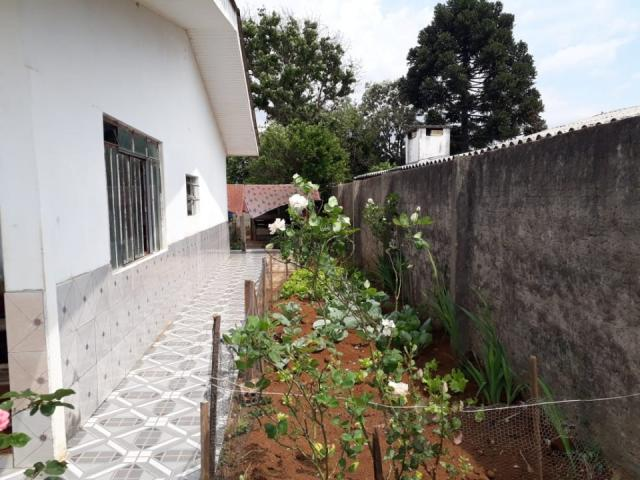 8287 | terreno à venda em vila bela, guarapuava - Foto 2