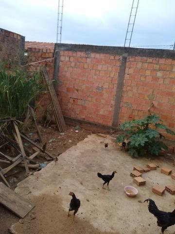 Lote Bem Localizado - Foto 3