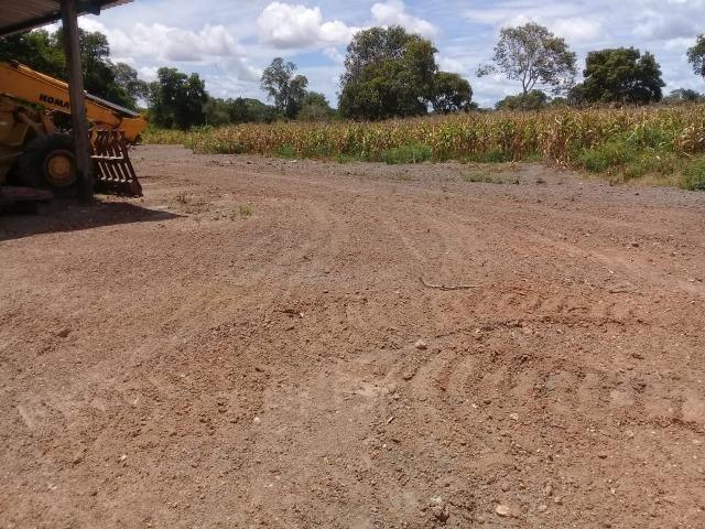 Fazenda Boa de Terra em Cocalinho - MT - Foto 17