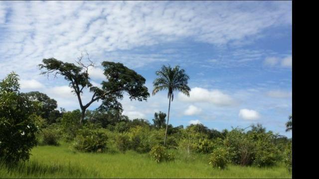 726 Há Alô Brasil - MT. Barata > 2,5 Milhões > 50% Permuta